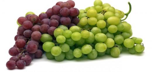 Extracto-semilla-uva